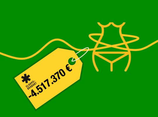 afslanking provincie
